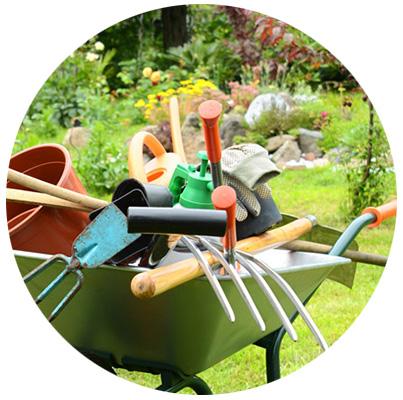 Jardineria las tareas en julio se enfocan en las plantas for Servicio de jardineria df
